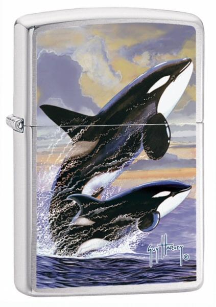 Guy Harvey Killer Whales